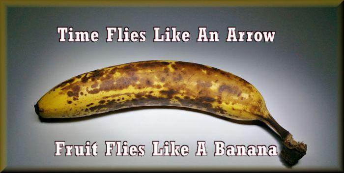 bananflies