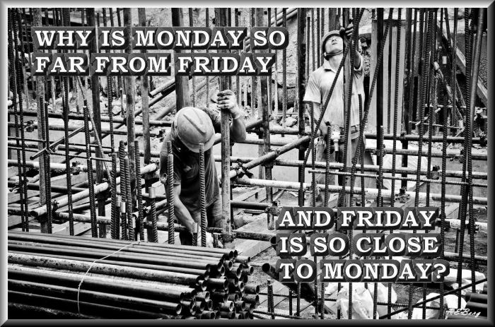 003workweek