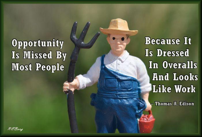 opportunity-unrecognized