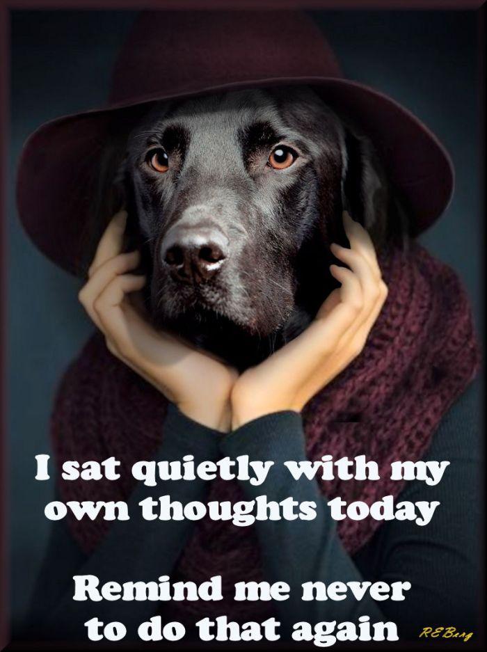 introspective-regrets