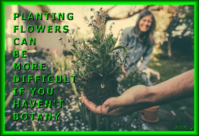 Horticultural Hint