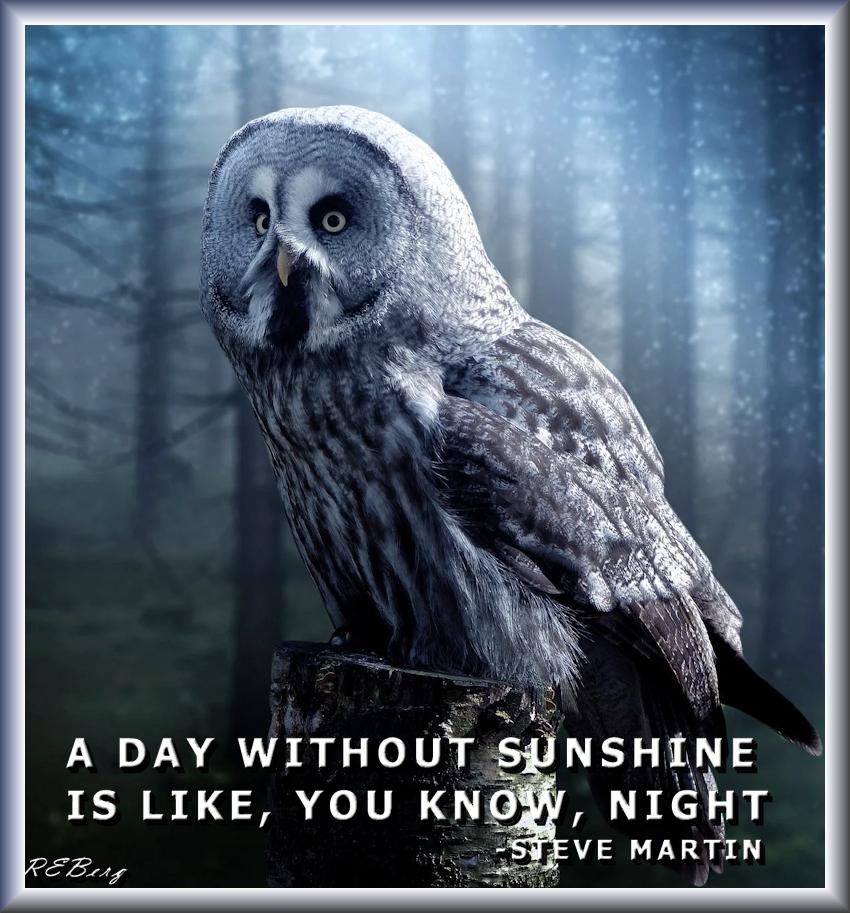 Illuminating Wisdom